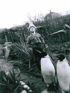 A boy with the Røst penguins