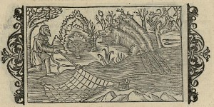 Catching beaver illustrated in Olaus Magnus