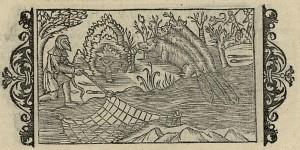 Catching beaver illustrated in Olaus Magnus