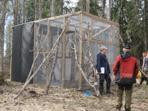 Cage used for the white-backed woodpecker releases at Båtfors Nature Reserve