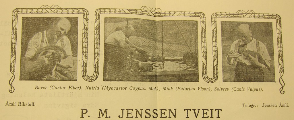 P. M. Jenssen Tveit letterhead from 1937. Letter in the Jamtli archive.