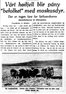 """Our high mountains will be fully populated with muskox. They are not a danger for mountain hikers."" Aftenposten, 10 October 1932"