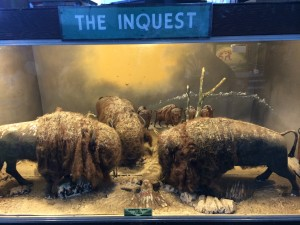 """The Inquest"". A coin operated animated display at the Musée Mécanquie in San Francisco, California. Photo by Dolly Jørgensen."