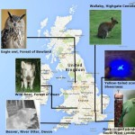 Map accompanying the news article 'Aliens among us: What strange species are making England home?'