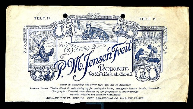 "Letterhead of P.M. Jensen Tveit. Notes the items he has for sale, including ""bæverbiller"" (beaver beetles). Original item in Natural History Museum (London) archives."