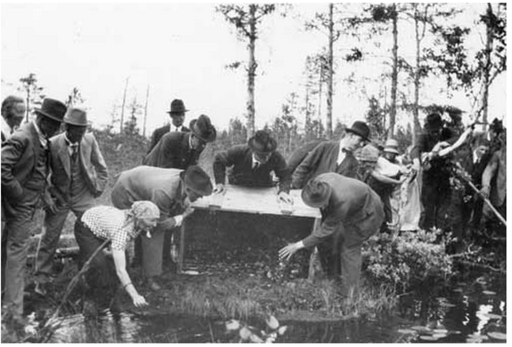 Release of the beaver pair at Harrsjön in 1925. Photo in the Jamtli collection, by Hanna Vinberg.
