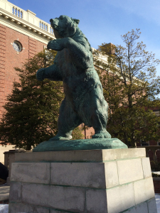 Brown Bear statue on Brown University campus. Photo by D Jørgensen.